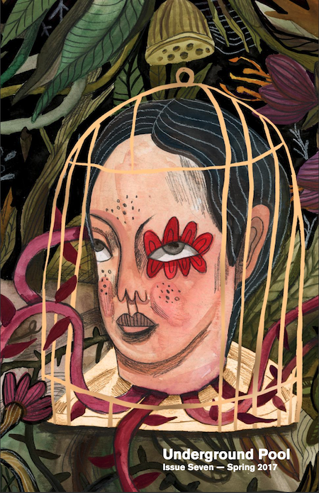 A cover of Underground Pool spring issue 2017. An illustrated head with a flower around one eye is seen in a bird cage.