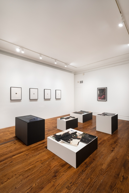 Installation view of works by Abbey Willams in a gallery with white walls and a wooden floor. Works of various media are installed including four framed works along one wall on the left of the image and five black and white pedestals located on the floor toward the center of the space.