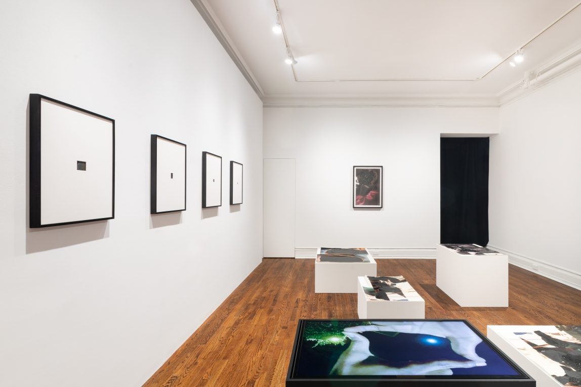 Installation of works by Abbey Willams in a gallery with white walls and a wooden floor. Four framed works are along one wall on the left of the image and five black and white pedestals located on the floor toward the center of the space. One pedestal has a digital monitor visible on top displaying hands in a square formation and a green blob on the left.