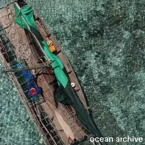 "An overhead shot of a canoe on green water, overlaid with the words ""ocean archive"""